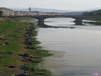 Vissers langs de Arno