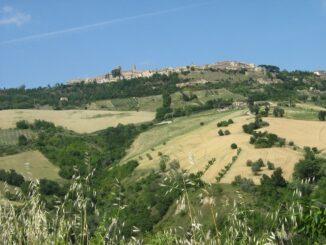 Monterubbiano panorama